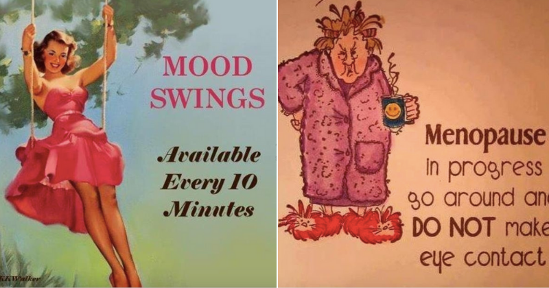 30 Hilarious Memes About Menopause That Will Have All Women Nodding in  Agreement