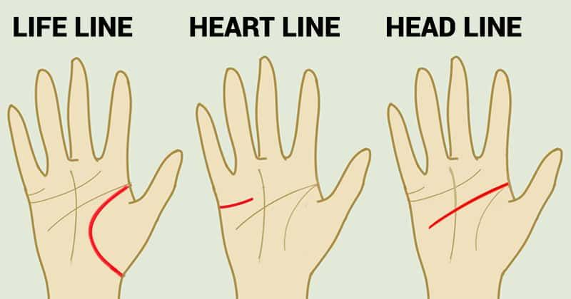 what is heart line in hand
